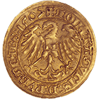 Holy Roman Empire, City of Nuremberg, Goldgulden 1507 (obverse)