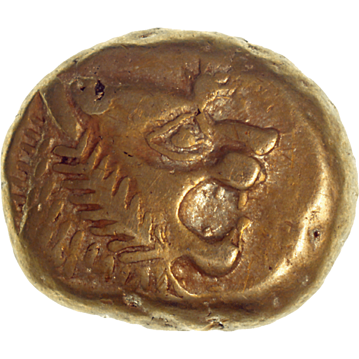 Lydia, Uncertain King, Trite (obverse)