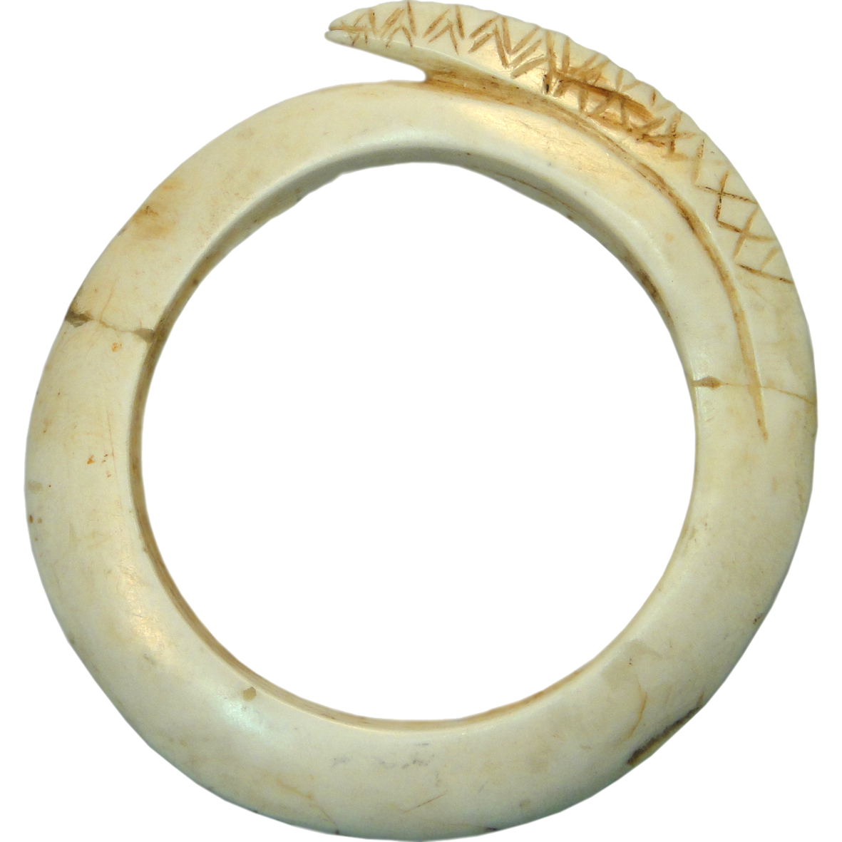 Papua New Guinea, Green River District, Kueruek Clam Shell Ring (obverse)