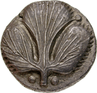 Sicily, Selinus, Sater or Didrachm (obverse)