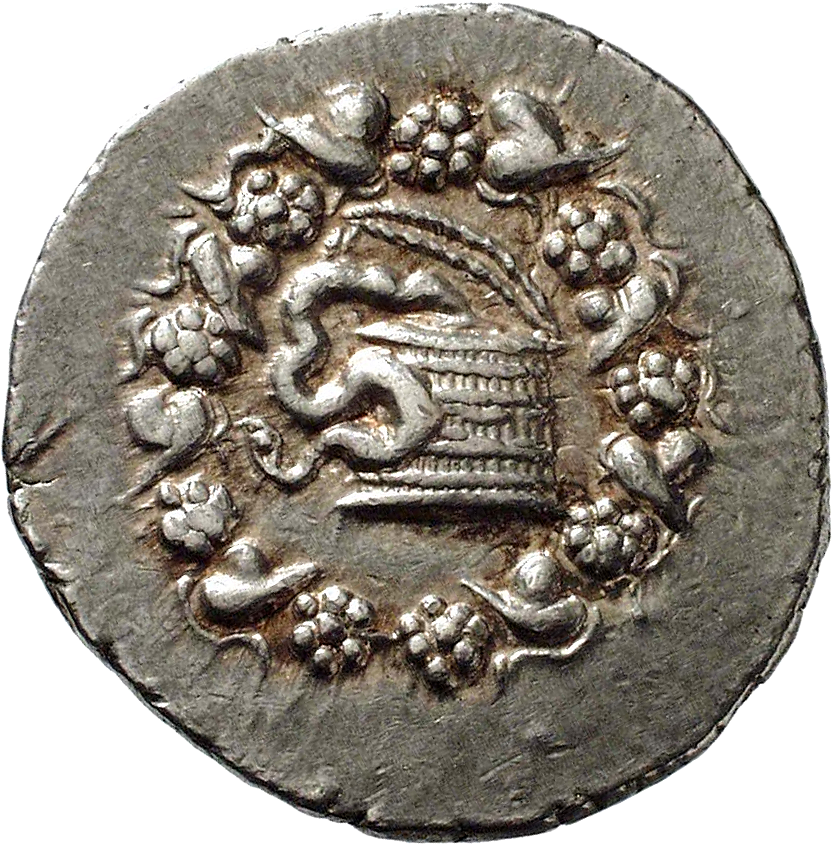 Mysia, Kingdom of Pergamum, Cistophor (obverse)