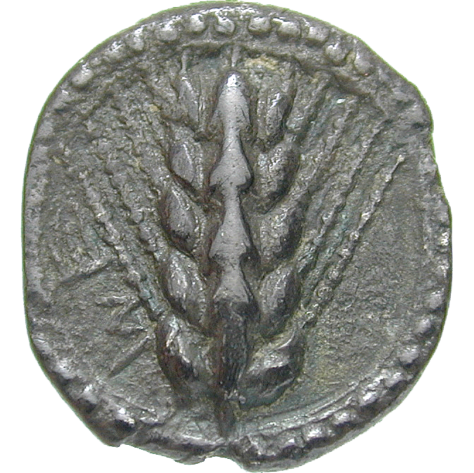 Southern Italy, Lucania, Metapontum, Hecte (obverse)
