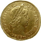 Kingdom of France, Louis XIV, Louis d'or 1646 (obverse)